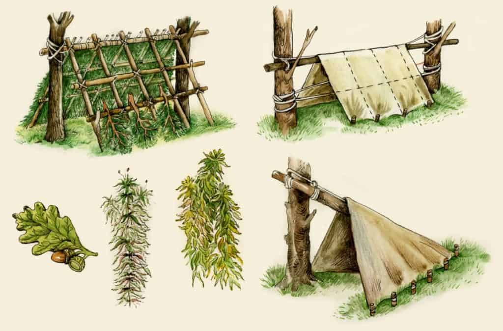 Illustration of survival shelters made out of natural materials as part of disaster survival skills training