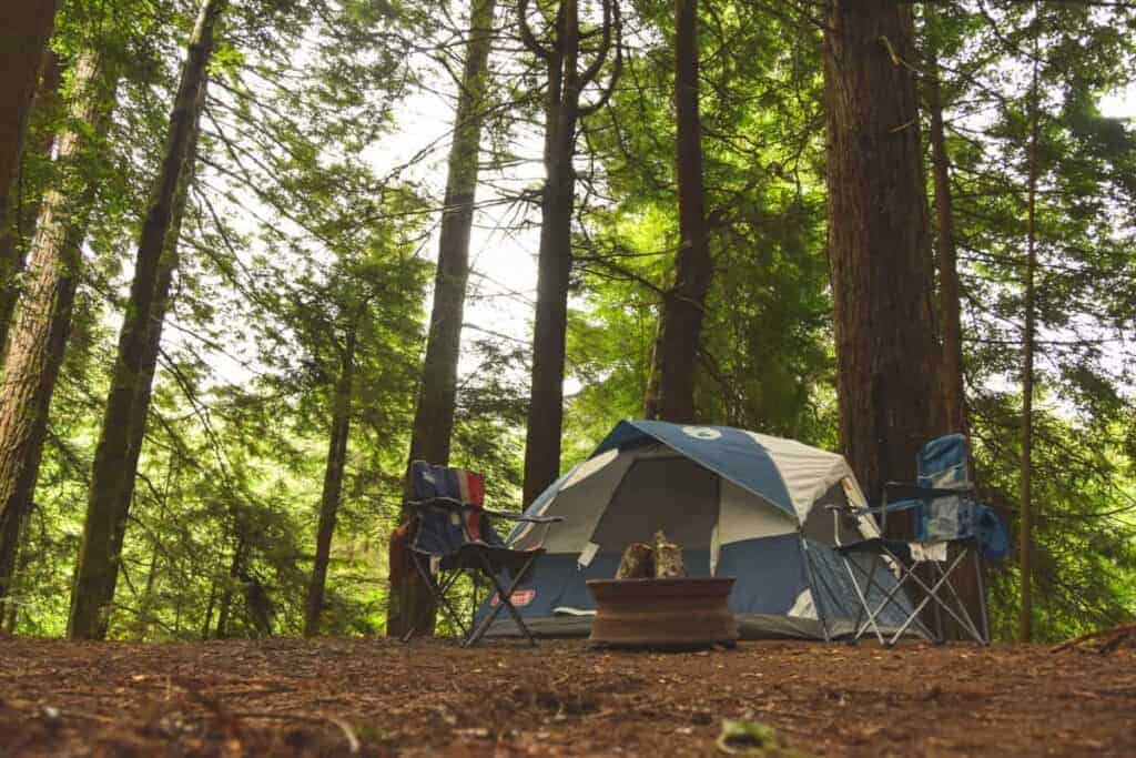 A wilderness survival bug out camp